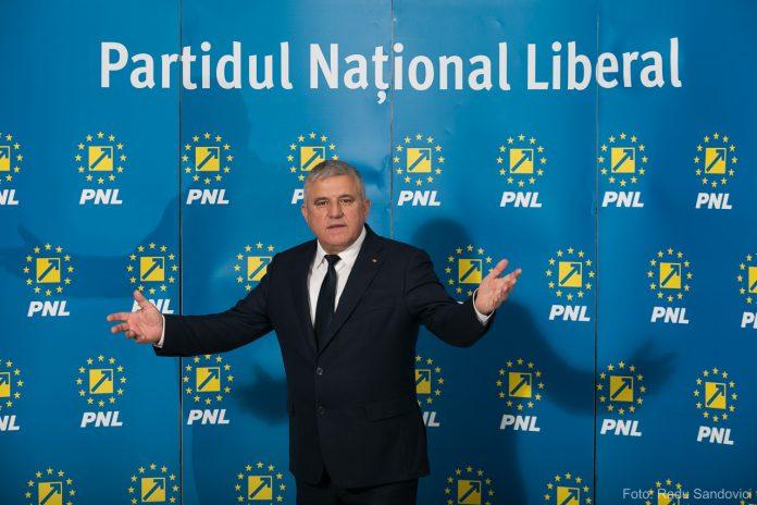 Dumitru Mihalescul PNL
