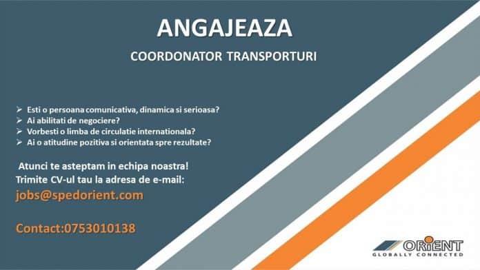 ORIENT angajeaza coordonator transporturi