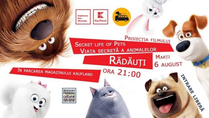 Cinema în aer liber la Kaufland Rădăuți pe 6 August